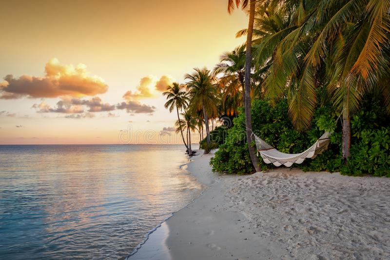 Rede de Î 'em uma praia tropical em Maldivas fotos de stock royalty free