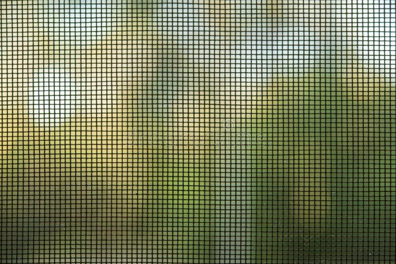 Rede de mosquito nas janelas, portas fotografia de stock royalty free