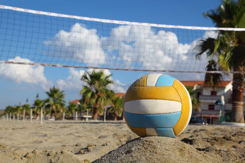 Rede do voleibol, voleibol na praia e palmeiras fotografia de stock
