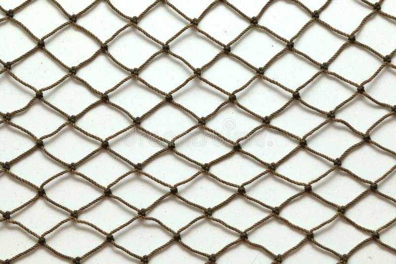 Rede dos peixes fotografia de stock royalty free