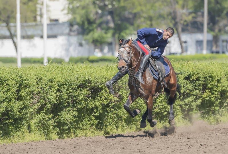 Rede durch den Athleten auf einem Pferd an der Rennbahn auf der Öffnung stockfotos