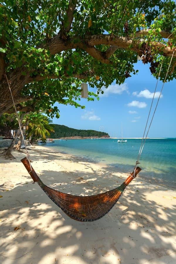 Rede e árvore em uma praia imagens de stock royalty free