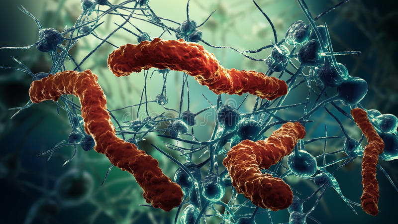 Rede e vírus da pilha de nervo ilustração do vetor