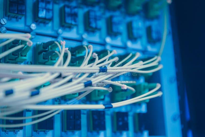 Rede informática da tecnologia da informação Interruptor e cabos ethernet de rede foto de stock royalty free