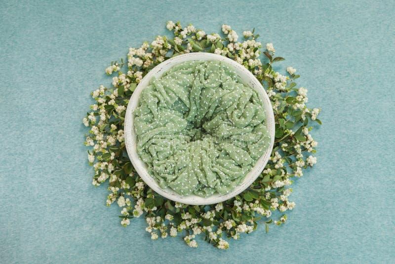 Rede med ett grönt mattt för fotoforsar av newborns som dekoreras med kvistar med vita bär royaltyfria foton