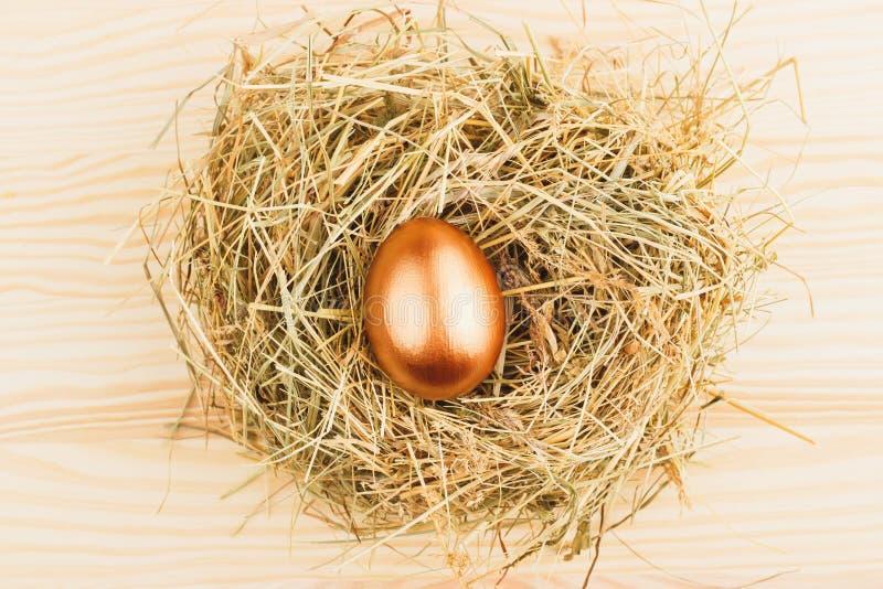 Rede med ett guld- ägg royaltyfri fotografi