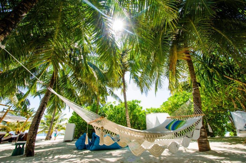 Rede na barra tropical imagem de stock royalty free