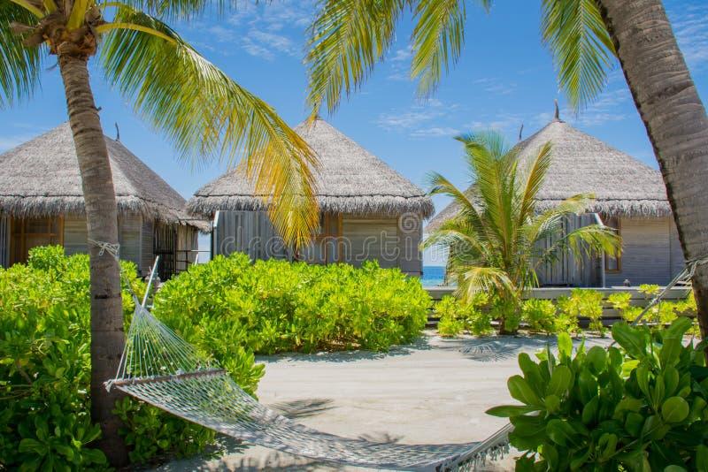 Rede na praia em Maldivas fotos de stock royalty free
