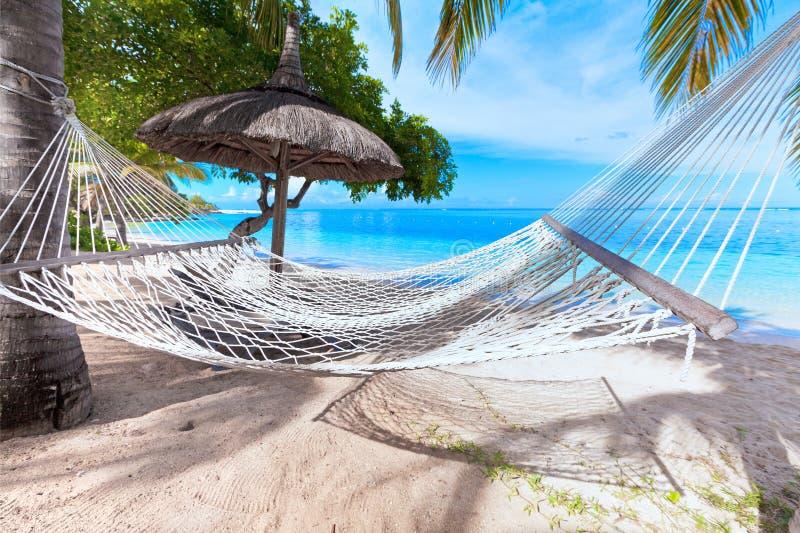 A rede na praia tropical com folha de palmeira cobre com sapê guarda-chuvas e palmeiras do telhado no fundo imagem de stock