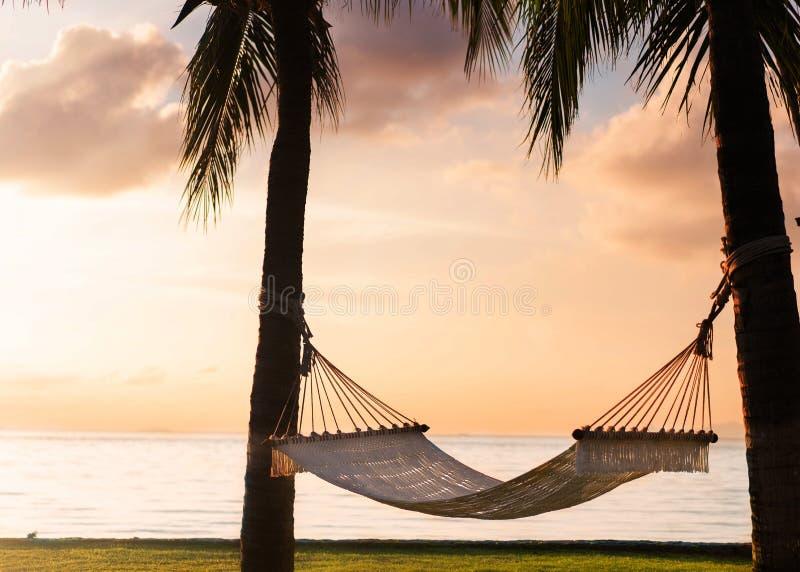 Rede nas palmeiras tropicais que negligenciam as montanhas fotos de stock royalty free