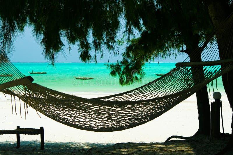 Rede vazia isolada entre árvores das coníferas, a areia branca e o fundo verde do oceano de turquesa - praia de Paje, Zanzibar fotografia de stock