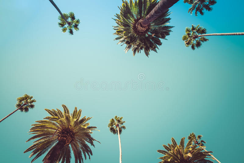 Redeo Los Angeles Palm Trees Vintage royalty free stock image