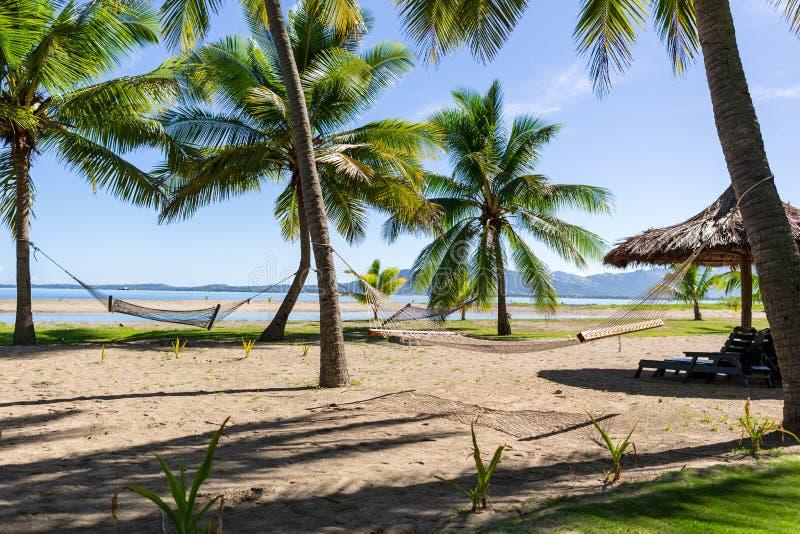Redes nos visitantes de espera da praia de Fiji a relaxar neles imagens de stock