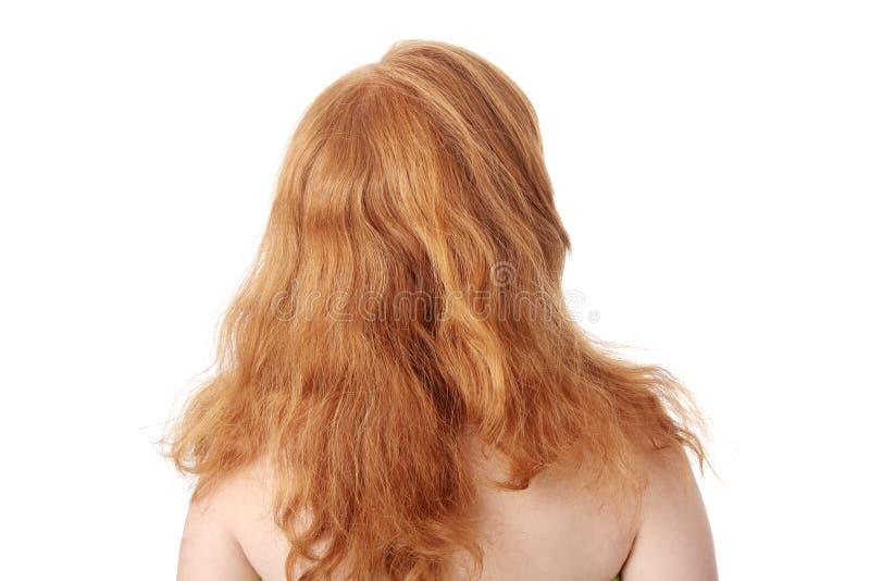 Redhead lizenzfreies stockbild