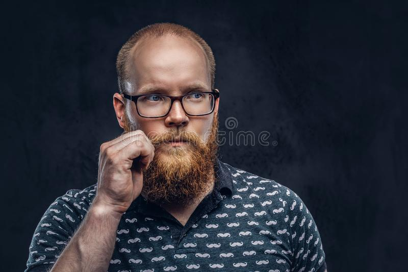 Redhead bearded male dressed in a t-shirt posing with a hand on his mustache. Isolated on a dark textured background. Portrait of a redhead bearded male dressed stock photo