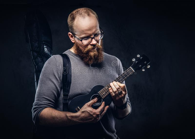 Redhead bearded male musician wearing glasses dressed in a gray t-shirt playing on a ukulele. on a dark. Redhead bearded male musician wearing glasses dressed in royalty free stock image
