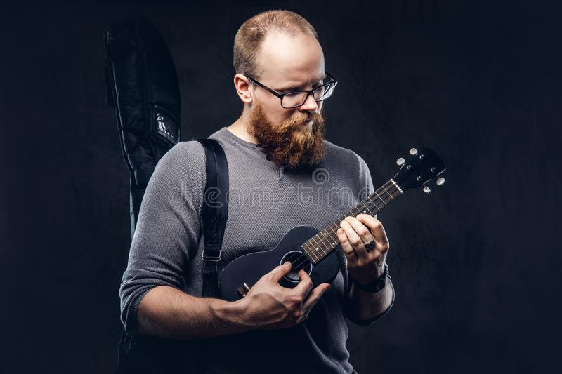 Redhead bearded male musician wearing glasses dressed in a gray t-shirt playing on a ukulele. on a dark. Redhead bearded male musician wearing glasses dressed in royalty free stock photography