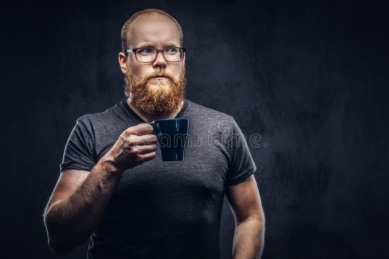 Redhead bearded male standing with a cup of coffee wearing glasses dressed in a gray t-shirt, isolated over a dark. Redhead bearded male standing with cup of royalty free stock photos