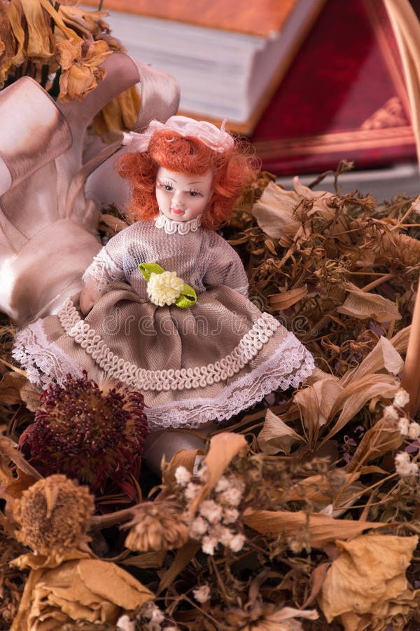 Redhead doll in dry flowers royalty free stock photos
