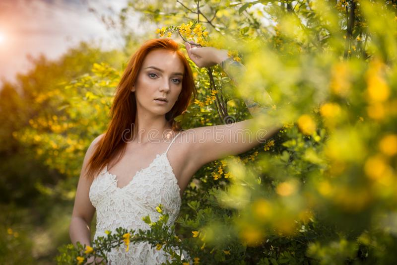 Download Redhead Girl In Acacia Trees Stock Photo - Image of natural, flowers: 117656398