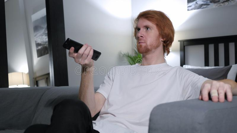 Redhead Man Watching TV, Changing Channels with Remote. 4k , high quality royalty free stock photo