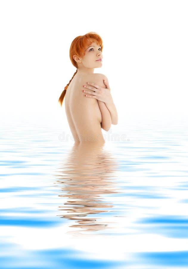 Redhead saudável na água azul imagem de stock