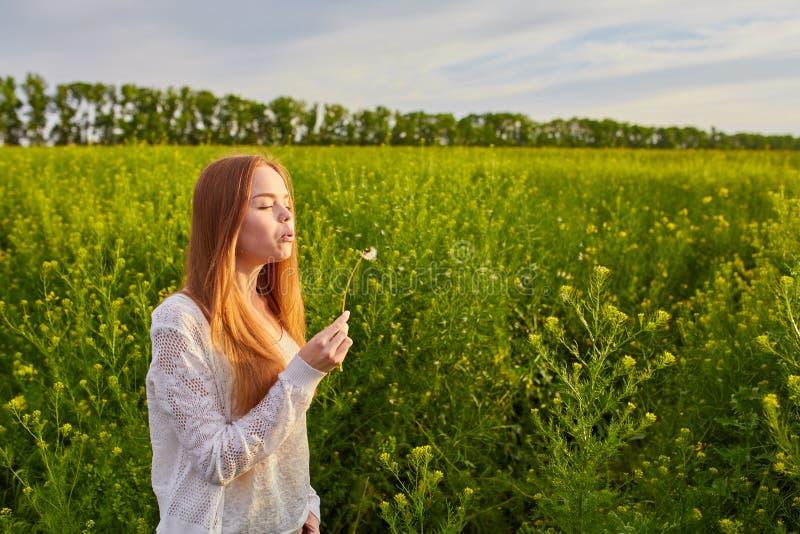Redheaded nastoletni dziewczyny dmuchanie na dandelions obraz royalty free