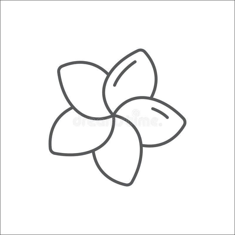 Redigerbar översiktssymbol för Plumeria - perfekt symbol för PIXEL av den tropiska blomman i den tunna linjen konststil vektor illustrationer