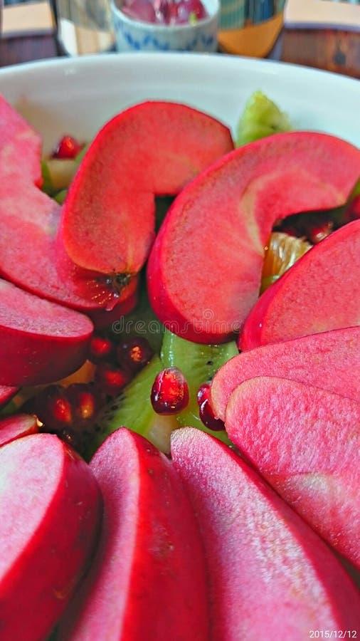 Redlove-Kalypso IITM_SY__20151212 lizenzfreie stockfotos