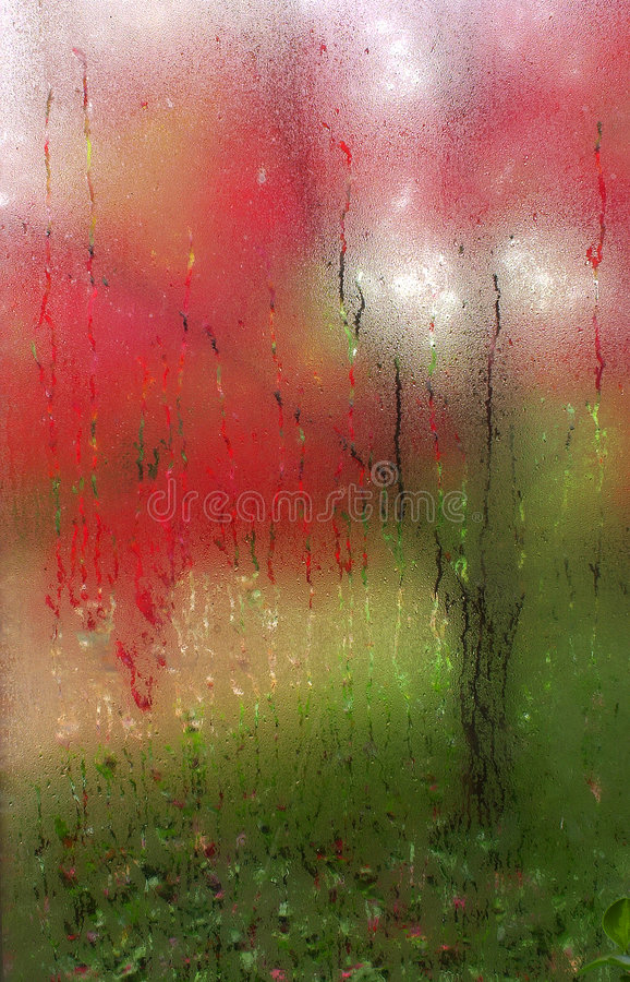 Redmist. Fall colors from tree shot through glass window with condensation royalty free stock photos