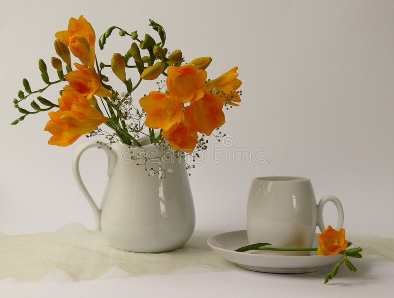 Redolent. A cup yellow fragrances flowers in white jug royalty free stock images