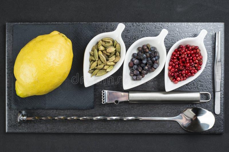 Redskap och ingredienser som förbereder en ginuppiggningsmedel arkivbild