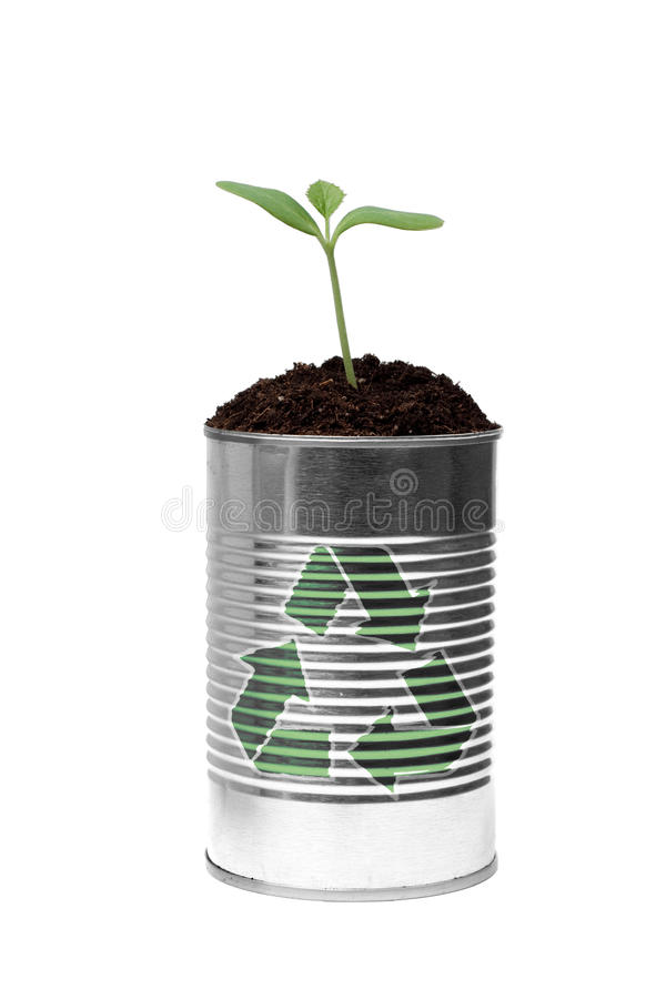 Reduce Reuse and Recycle. New growth and green shoots come from recycling this simple tin can isolated against white stock photography