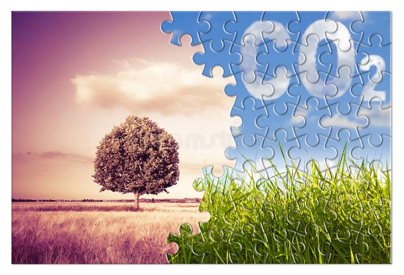 Reduction of CO2 presence in the atmosphere - jigsaw puzzle concept image against a green wild grass with an isolated tree in a stock photography