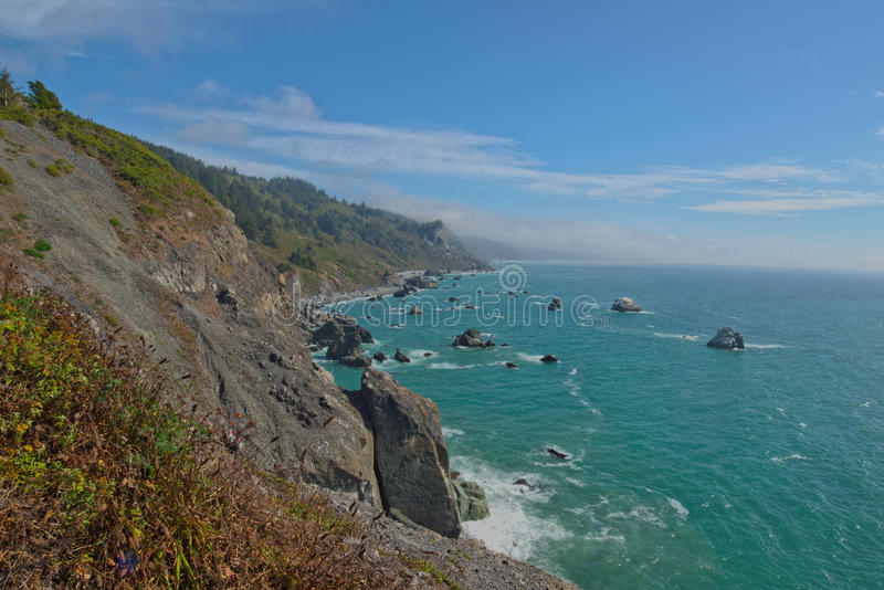 Redwood coast south of high bluff overlook stock images