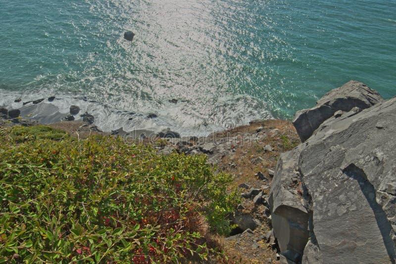 Redwood coast west of high bluff overlook near cliff edge stock photos