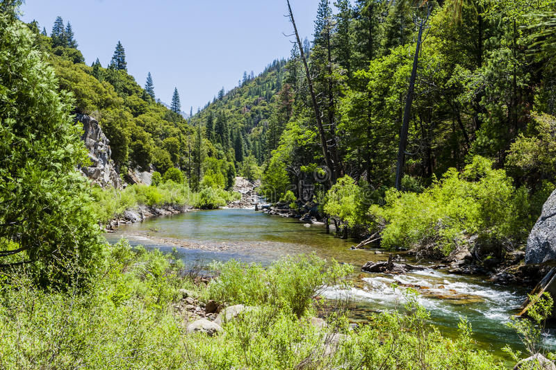 Redwood Creek, Highway 180, Kings Canyon National Park, Californ royalty free stock image