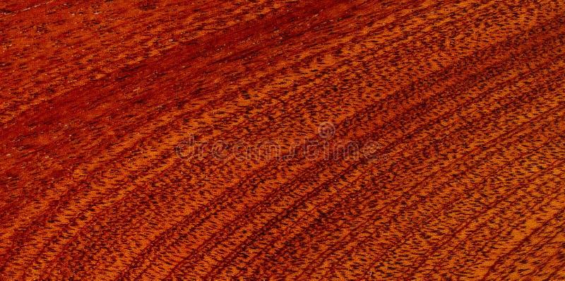 Redwood texture stock photography