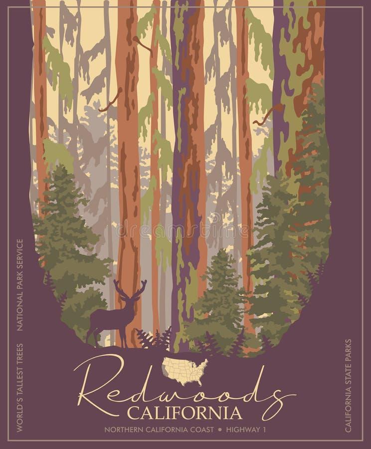 Redwoods parkują w Kalifornia wektorowym kolorowym plakacie Stanów parki Światowi ` s wysocy drzewa ilustracji
