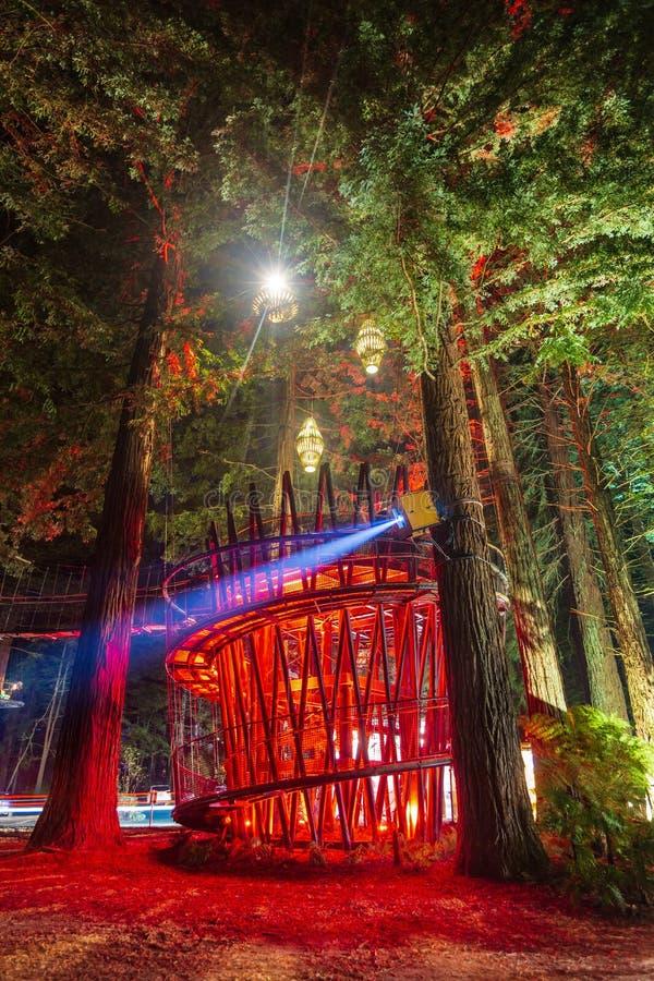 Entrance to `Redwoods Treewalk` at night. Rotorua, New Zealand. The Redwoods Treewalk is an eco-tourism attraction in the Whakarewarewa redwood forest, Rotorua royalty free stock images