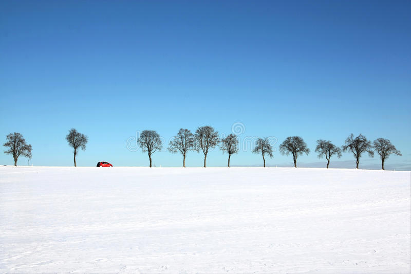 Ree line with a passing red car. Snow landscape - tree line with a passing red car in a sunny winter day royalty free stock photos