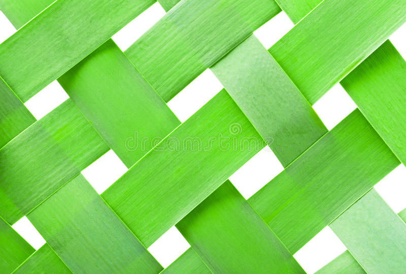 Download Reed stock image. Image of abstract, reeds, cell, plant - 20000001
