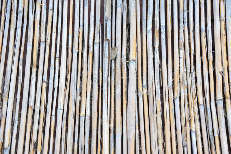 Reed background, close up. Reed background from roof of antique hut royalty free stock image