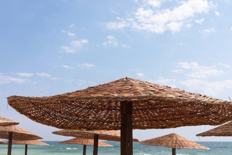 Reed beach umbrella stock image