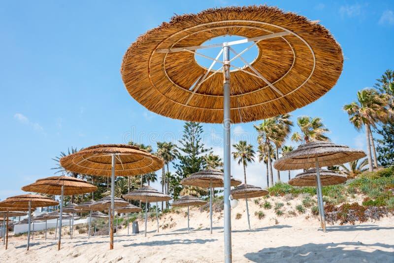 Reed beach umbrellas, sunshades against blue sky on the beach. Bamboo parasols, straw umbrellas on on white sandy. Tropical seashore. Tropical sea beach royalty free stock image