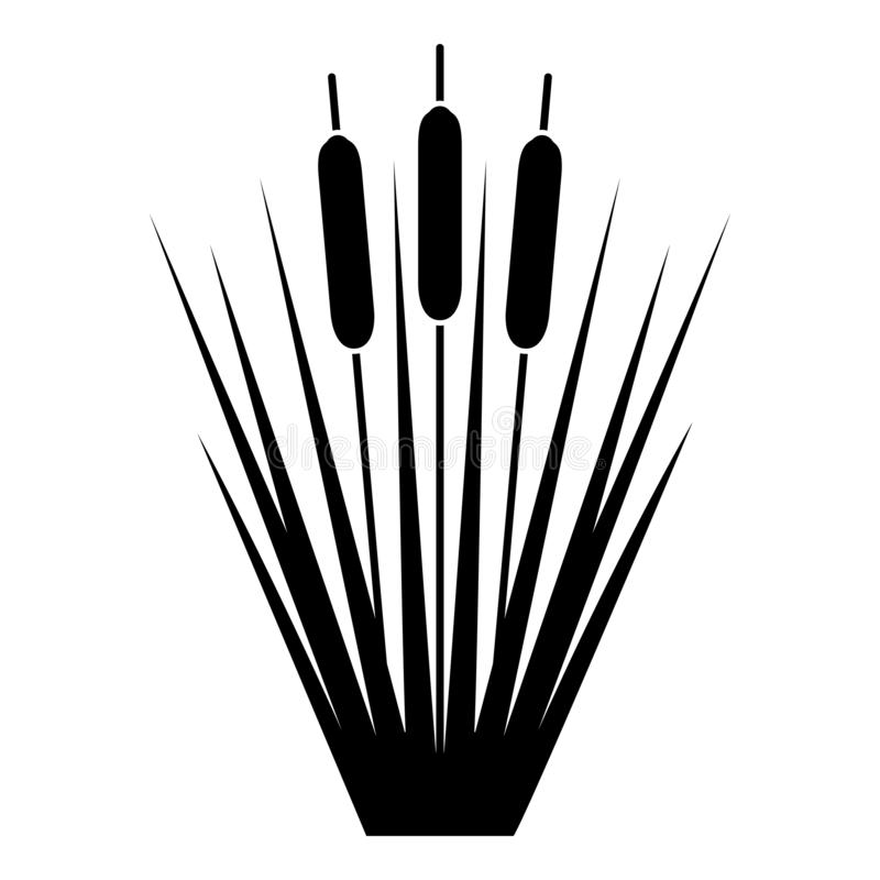 Reed Bulrush Reeds Club-rush ling Cane rush icon black color vector illustration flat style image royalty free illustration