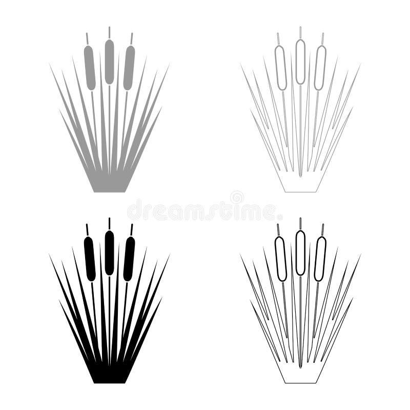 Reed Bulrush Reeds Club-rush ling Cane rush icon set black color vector illustration flat style image. Reed Bulrush Reeds Club-rush ling Cane rush icon set black stock illustration