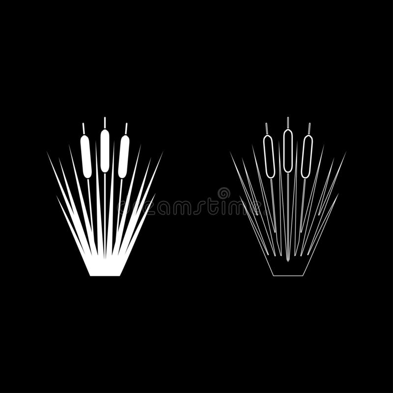 Reed Bulrush Reeds Club-rush ling Cane rush icon set white color vector illustration flat style image. Reed Bulrush Reeds Club-rush ling Cane rush icon set white royalty free illustration