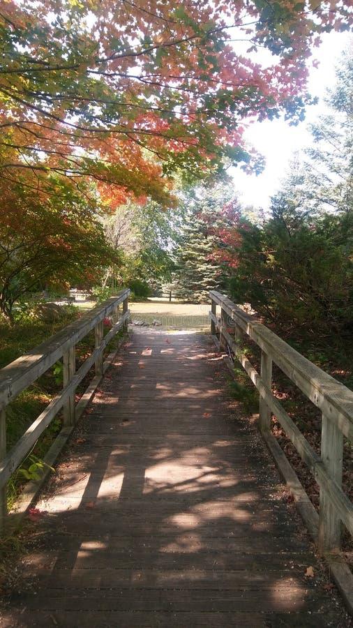 Reed City Michigan Foot Bridge en automne images stock