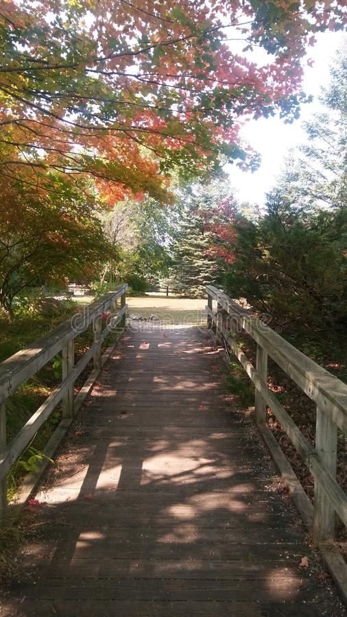 Reed City Michigan Foot Bridge no outono imagens de stock